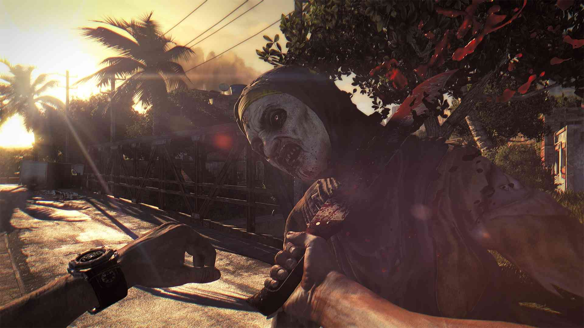 Dying Light_0_6